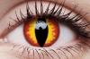 Драконий глаз