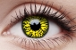 Волчий глаз